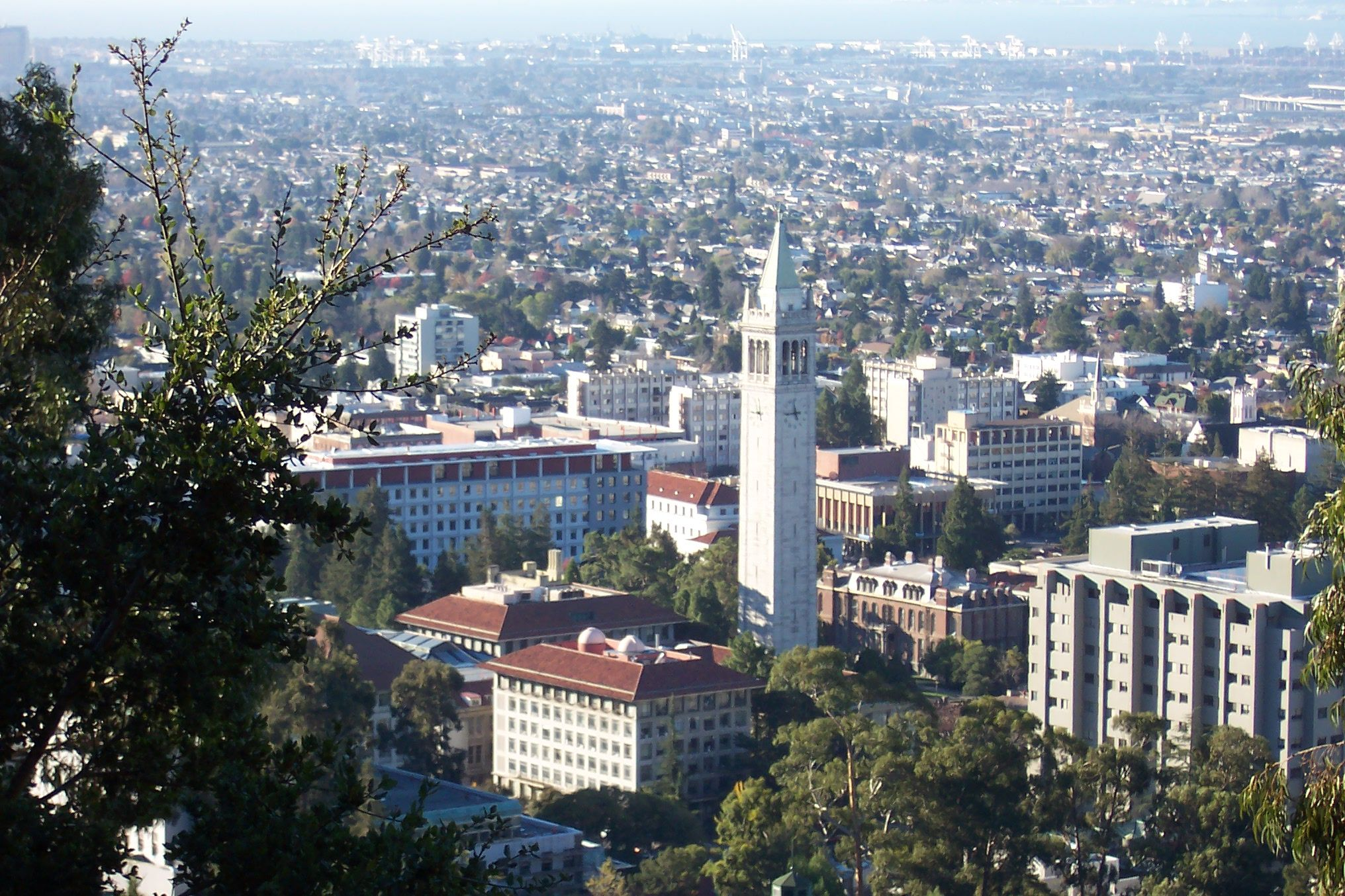 UC-Berkeley-campus-overview-from-hills_h
